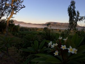 morning mists on the Chapada