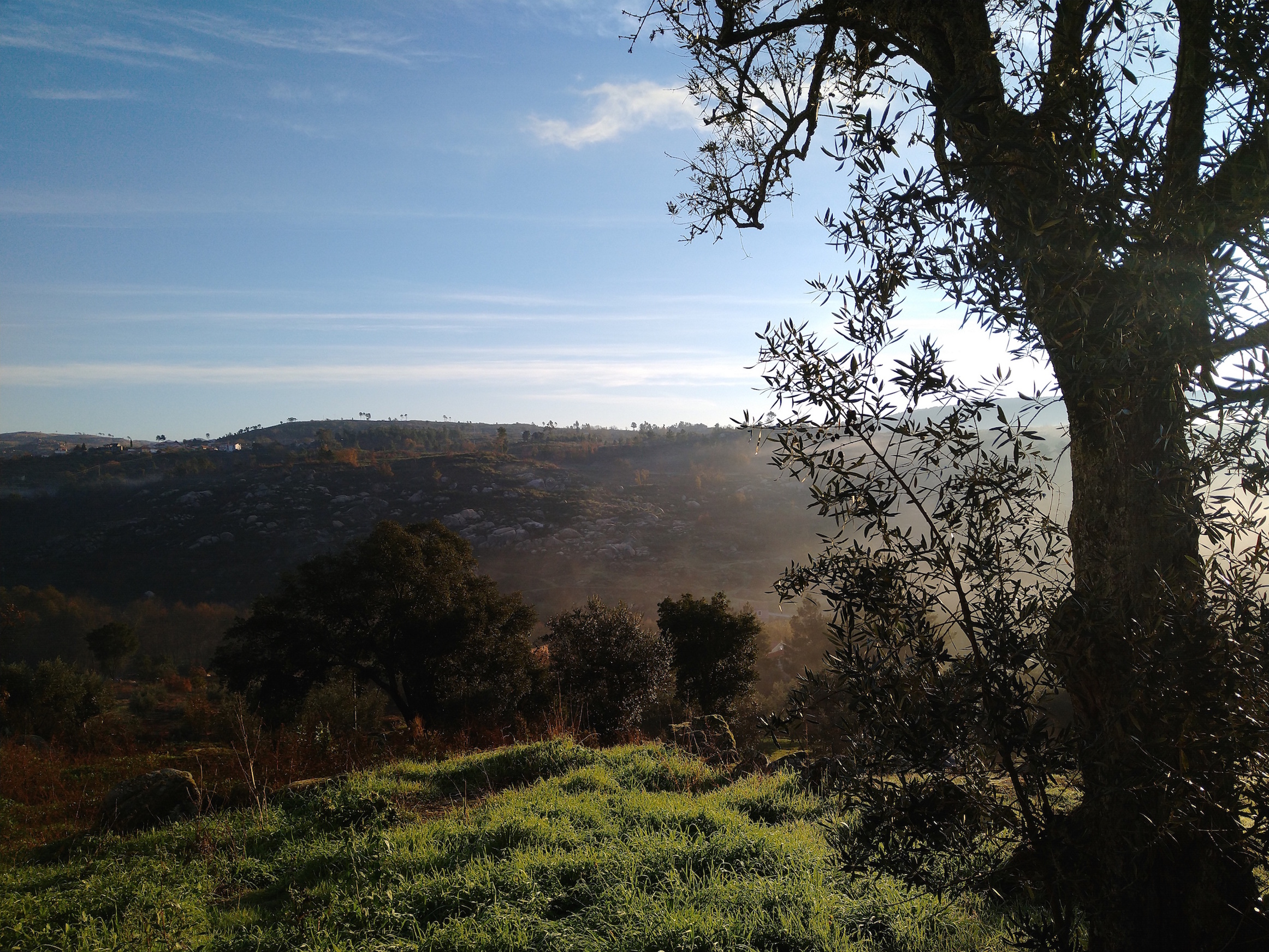 from-our-new-home-in-portugal-a-frequency-transmission